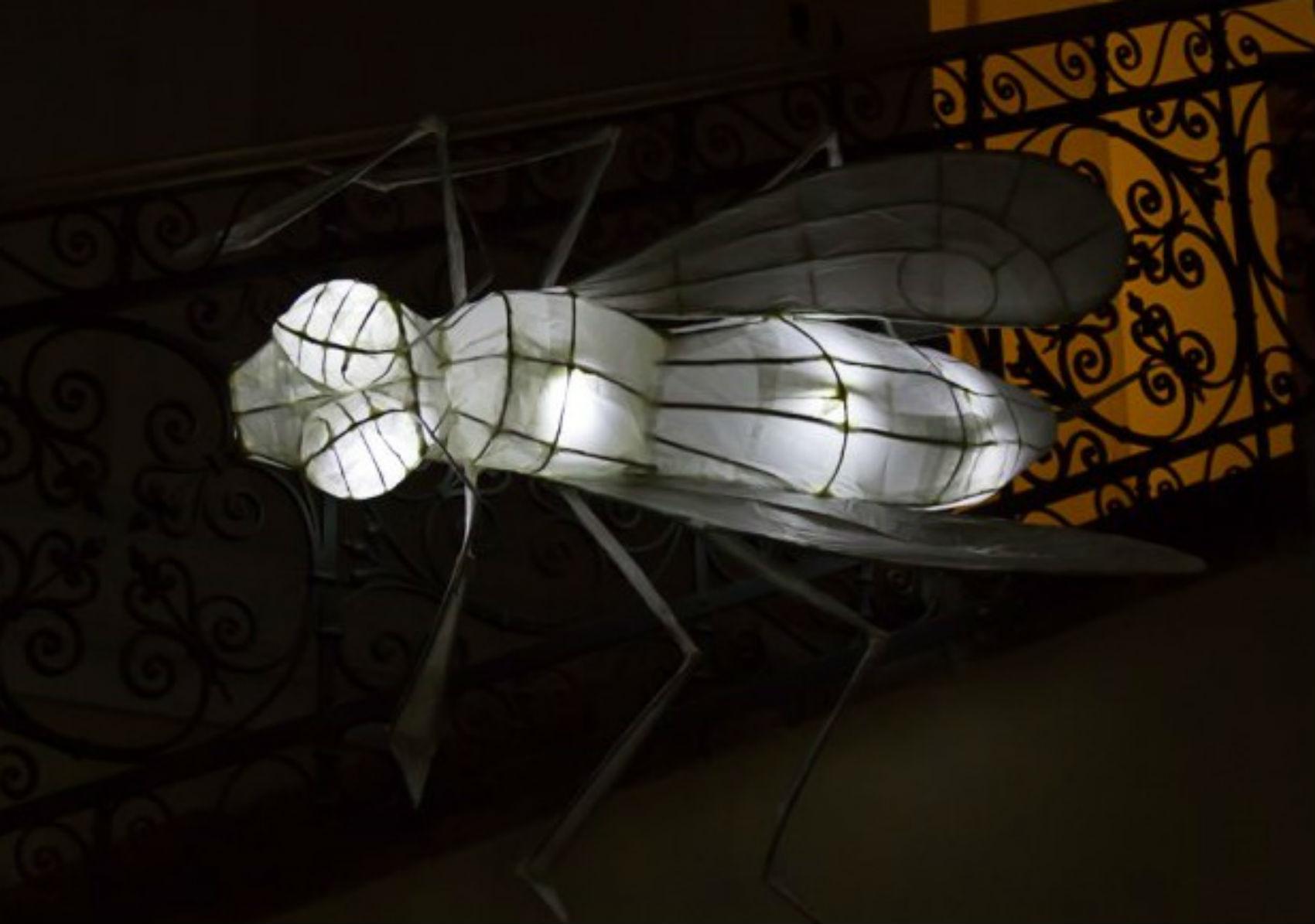 Jules Verne's Illuminations